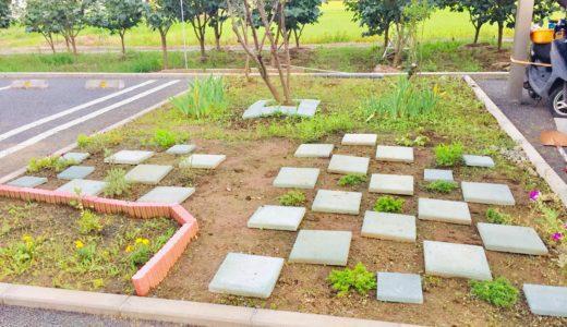『くぼた整骨院のガーデニング日記〜2020年6月〜』