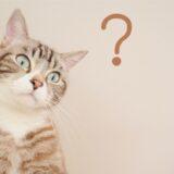『くぼた整骨院の施術及び各種メニューについて Q&A』